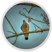 Dove #g2 Round Beach Towel by Leif Sohlman