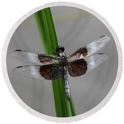 Round Beach Towel featuring the photograph Dragon Fly by Jerry Battle