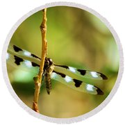 Dragon Fly On A Summer Morning Round Beach Towel