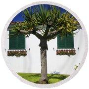Dragon Tree Garden House Round Beach Towel