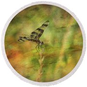Dragonfly Art Round Beach Towel