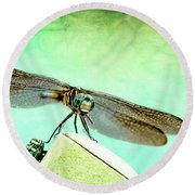 Dragonfly Eating His Bug Round Beach Towel