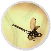 Round Beach Towel featuring the painting Dragonfly Flying by Odon Czintos