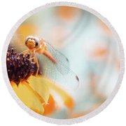Dragonfly In The Garden Round Beach Towel