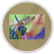 Dragonfly Of Many Colors Round Beach Towel