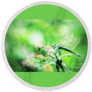 Dragonfly On Lantana-green Round Beach Towel by Toma Caul