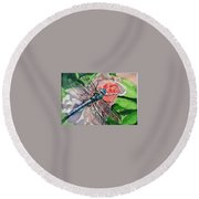 Dragonfly On Rose Round Beach Towel