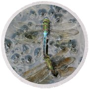 Dragonfly Reflections Round Beach Towel