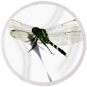 Round Beach Towel featuring the painting Dragonfly by Tbone Oliver