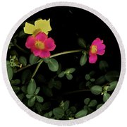 Dramatic Colorful Flowers Round Beach Towel
