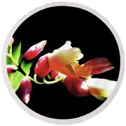 Dramatic Oriental Orchid Round Beach Towel