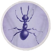 Drawn Purple Ant Round Beach Towel by Boriana Giormova