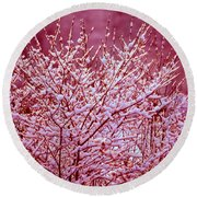 Round Beach Towel featuring the photograph Dreaming In Red - Winter Wonderland by Susanne Van Hulst