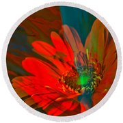 Round Beach Towel featuring the photograph Dreaming Of Flowers by Jeff Swan