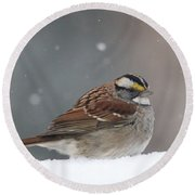 Dressed For Snow Round Beach Towel by Living Color Photography Lorraine Lynch