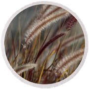 Round Beach Towel featuring the photograph Dried Desert Grass Plumes In Honey Brown by Colleen Cornelius