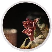 Round Beach Towel featuring the digital art Dried Rose And Coffee by Aliceann Carlton