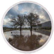 Dried Tree Reflected Round Beach Towel