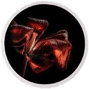 Dried Tulip Blossom Round Beach Towel