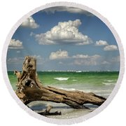 Round Beach Towel featuring the photograph Driftwood And Fort Myers by Greg Mimbs