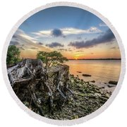 Round Beach Towel featuring the photograph Driftwood At The Edge by Debra and Dave Vanderlaan