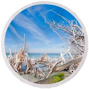 Driftwood C141348 Round Beach Towel