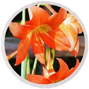 Drooping Blooms Of Orange Round Beach Towel