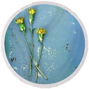 Round Beach Towel featuring the photograph Dry Flowers On Blue by Jill Battaglia