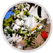 Dubrovniks Butterfly Round Beach Towel