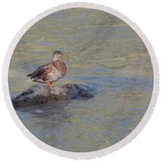 Duck Alone On The Rock Round Beach Towel