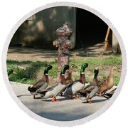 Duck And Hydrant Round Beach Towel