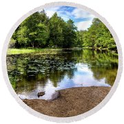 Round Beach Towel featuring the photograph Duck At Covewood by David Patterson