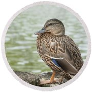 Duck By The Pond Round Beach Towel