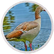 Goose By The Riverside Round Beach Towel