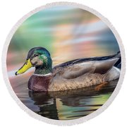 Duck In Water With Autumn Colors Round Beach Towel