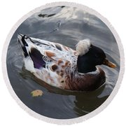Duck Round Beach Towel