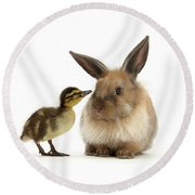 Duck Out Bunny Round Beach Towel