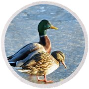 Duck Pair On Frozen Lake Round Beach Towel