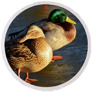 Duck Pair Sunbathing On Frozen Lake Round Beach Towel