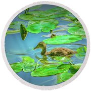 Round Beach Towel featuring the photograph Duckling In The Green. by Leif Sohlman