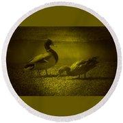 Ducks #3 Round Beach Towel