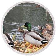 Ducks By The Pond Round Beach Towel