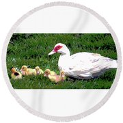 Round Beach Towel featuring the mixed media Ducks by Charles Shoup