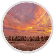 Round Beach Towel featuring the photograph Ducks In A  Row by Peter Tellone