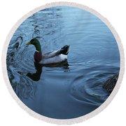 Mallard Duck Round Beach Towel