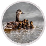 Round Beach Towel featuring the photograph Ducky Daycare by Sumoflam Photography