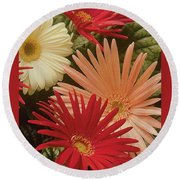 Dynamic Daisys Round Beach Towel