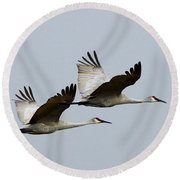 Dynamic Duo Round Beach Towel