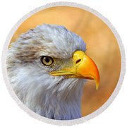 Round Beach Towel featuring the photograph Eagle 7 by Marty Koch