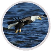 Round Beach Towel featuring the photograph Eagle And Pelican by Coby Cooper